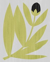 Flower Cutting II Fine-Art Print