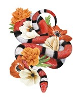 King Snake I Fine-Art Print