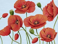 Poppy Topple III Fine-Art Print