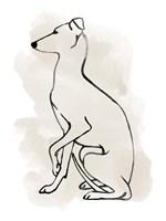 Greyhound Sketch II Fine-Art Print
