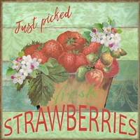 Farmers Market Strawberries Fine-Art Print