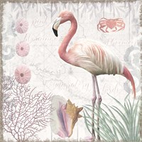 Waders I Flamingo Framed Print