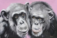 Loving Chimps Fine-Art Print