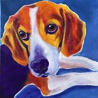 Beagle - Peyton Fine-Art Print