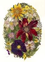 Dried Flowers 20 Fine-Art Print