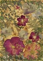 Dried Flowers 22 Fine-Art Print
