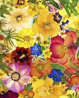 Dried Flowers 27 Fine-Art Print