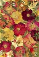 Dried Flowers 30 Fine-Art Print