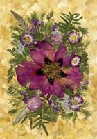 Dried Flowers 33 Fine-Art Print