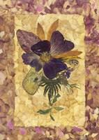 Dried Flowers 34 Fine-Art Print
