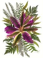 Dried Flowers 40 Fine-Art Print