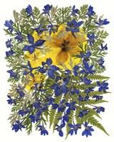 Dried Flowers 42 Fine-Art Print