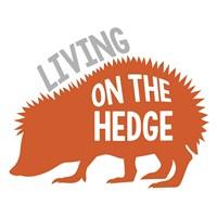 Hedgehog Fine-Art Print
