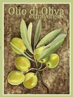 Olio Di Oliva Extravergine Fine-Art Print