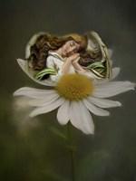 Angel Blessings Fine-Art Print