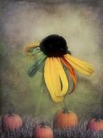Autumn Glow Fine-Art Print