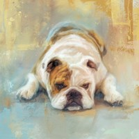 Bulldog With The Blues Fine-Art Print