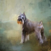 Schnauzer On Patrol Fine-Art Print