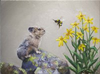 A Pika and a Bumblebee Fine-Art Print