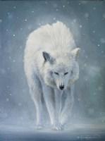 The White Wolf Fine-Art Print