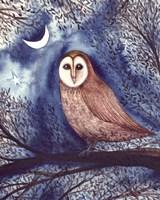 Midnight Owl Fine-Art Print