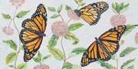 Monarch Majesty Fine-Art Print