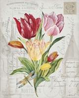 Bouquet Francais E Fine-Art Print