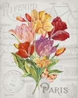 Bouquet Francais F Fine-Art Print