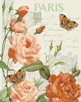 Fleurs Francaises A Fine-Art Print