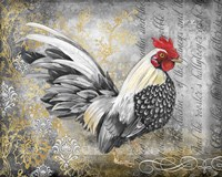 Gold Lace Rooster A Fine-Art Print