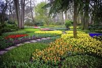 Colorful Corner Keukenhof Tulips Garden 4 Fine-Art Print