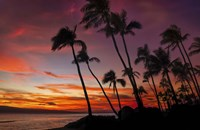 Maui Sunset Fine-Art Print