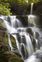 Smoky Mountains Waterfall Fine-Art Print