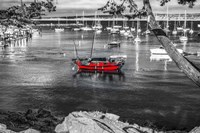 Red Boat Monterey Fine-Art Print