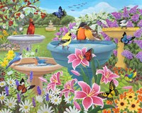 Bird Bath Haven Fine-Art Print