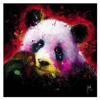 Panda Pop Fine-Art Print