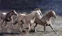 Rustic Running Horse Herd Fine-Art Print