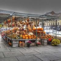 Byward Market Pumpkins Fine-Art Print