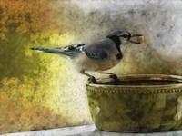 Peanut From The Peanut Bowl Fine-Art Print