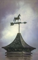 No Direction Known - Weather Vane Fine-Art Print