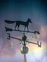 Rain On The Old Fox Weather Vane Fine-Art Print