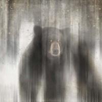 Antique Wildlife bear Fine-Art Print