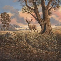 Loners Fine-Art Print