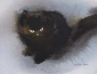 Black Kitten Fine-Art Print
