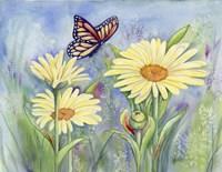 Butterfly Daisy Fine-Art Print