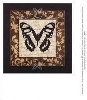 Classical Butterfly II Fine-Art Print