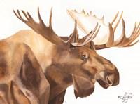Moose Be Single Fine-Art Print