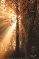 The Best of Autumn Fine-Art Print