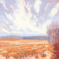 Pale Winter Sky Fine-Art Print
