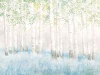 Soft Birches Fine-Art Print